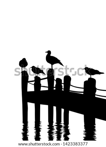seagulls silhouettes standing