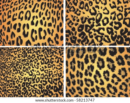 Seamless animal pattern skin fur vector leopard pack collection - stock vector