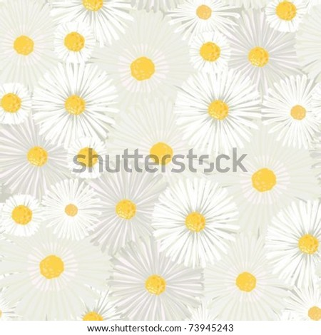 Seamless background with white chamomiles and daisies - stock vector