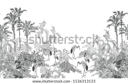 Seamless Border Black and White Vintage Lithograph Drawing of Jungle Tropical Forest with Palms and Exotic Crane Birds Wildlife British Old Style Design on White Background