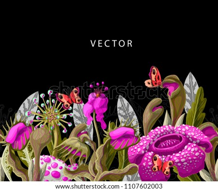 Seamless border with plant predators flowers such as Venus flycatcher, sundew and  other. Unique floral illustration. Stock fotó ©