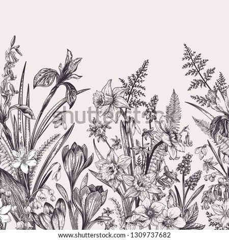 Seamless border with spring flowers. Botanical illustration. Black and white.