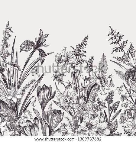 Seamless border with spring flowers. Botanical illustration. Black and white.