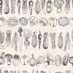 Seamless horizontal background of vegetables, vector illustration in vintage style.