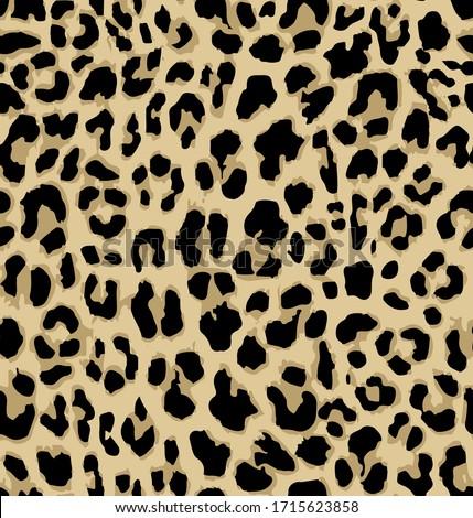 seamless leopard print repeat