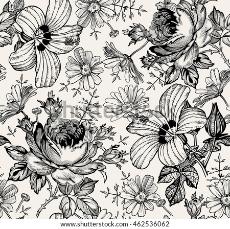Beautiful Black White Blooming Realistic Isolated Flowers Vintage Background Chamomile