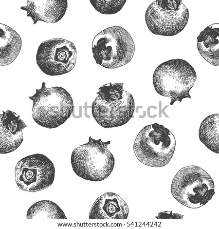 Seamless pattern design or background with blueberry. Hand drawn illustration by ink and pen sketch set. Elements include drawing and their own background shape.