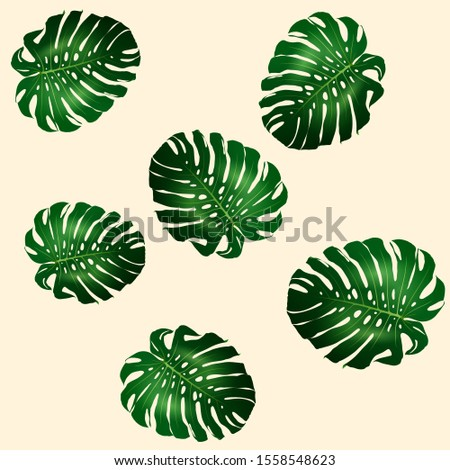 Seamless pattern of beautiful big green leaves Monstera plant, Monstera on yellow background, vector illustration