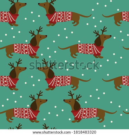 Seamless pattern of Dutchshunds in Christmas jumpers on blue background. Vector illustration.