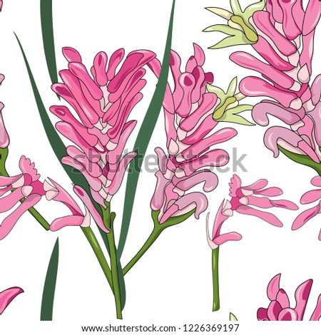 5ad8fd25d seamless pattern of hand drawn Australia native pink kangaroo paw flower  illustration on white background