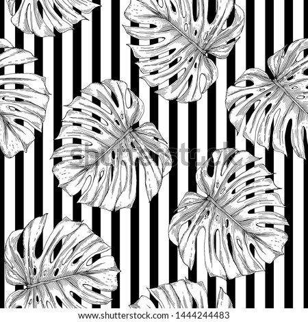 Seamless pattern of monstera leaves. Monstera leaves are drawn as a sketch on a striped background.
