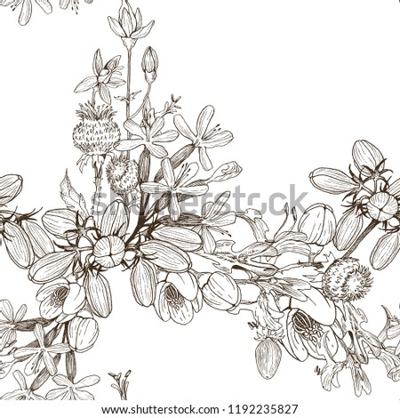 Seamless pattern of wild herbal flowers. Vector. Hand drawn artwork. Flower concept for wedding invitations, cards, tickets, congratulations, branding, boutique logo, label. Botanical style sketch #1192235827