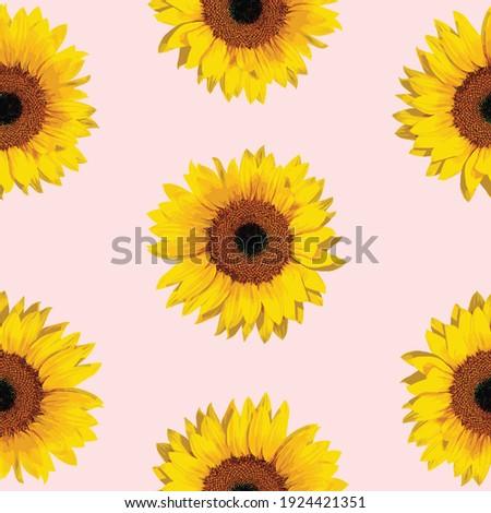 Seamless pattern sunflowers,Pattern of yellow sunflowers on a pink background,fabric pattern. Foto stock ©