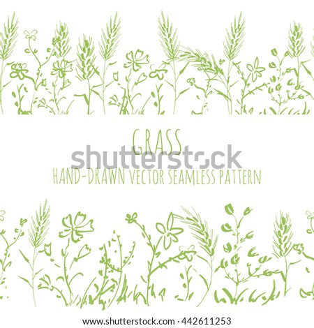Seamless pattern wild grass, isolated vector, drawing by hand #442611253
