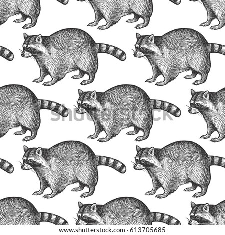 Seamless pattern with animals North America Raccoon. Hand drawing of wildlife. Vector illustration art. Black and white. Vintage. Design for fabrics, paper, textiles, fashion