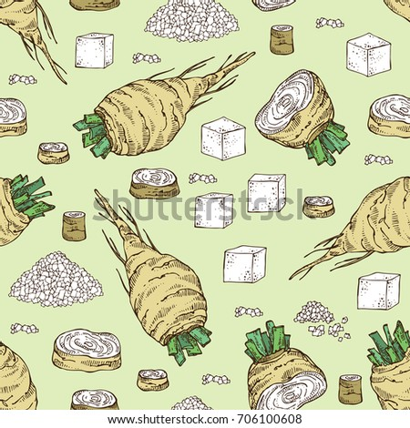 Seamless pattern with beet sugar: sugar and beet. Vector hand drawn illustration.
