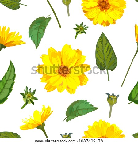 Seamless pattern with chrysanthemums flowers. Vector floral set with isolated colorful yellow plants. Golden-daisy.