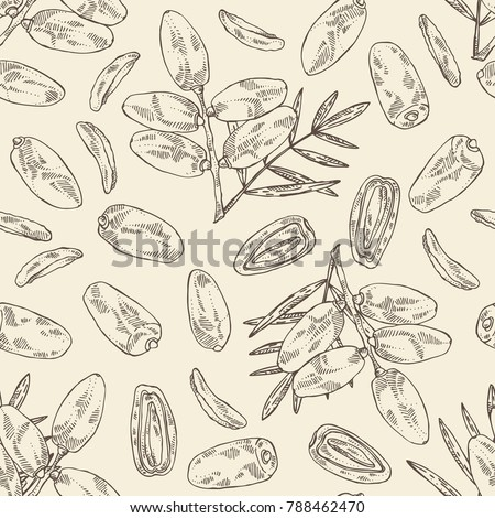 Seamless pattern with date fruit: branch, date fruits and leaves. Vector hand drawn illustration.