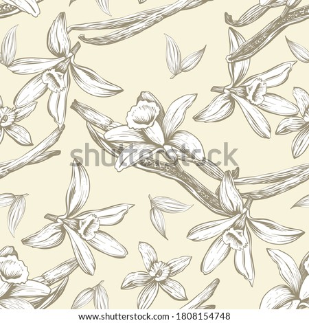 Seamless pattern with flowers and vanilla sticks. Orchid. Natural vector hand drawn illustration for printing fabric, wrapping paper, packaging. Photo stock ©