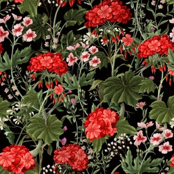 Seamless pattern with geraniums and wild flowers. Trendy floral vector print