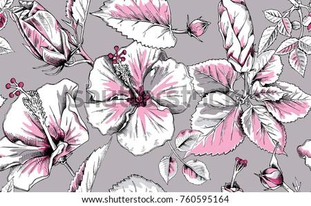 Hibiskus Blumen Vektor - Kostenlose Vektor-Kunst, Archiv-Grafiken ...