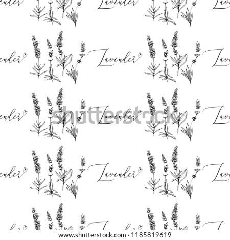 Seamless pattern with lavender herbs and lavender hand lettering. Black outline floral botanical illustration on white background. Vintage sketch backdrop or card design. #1185819619