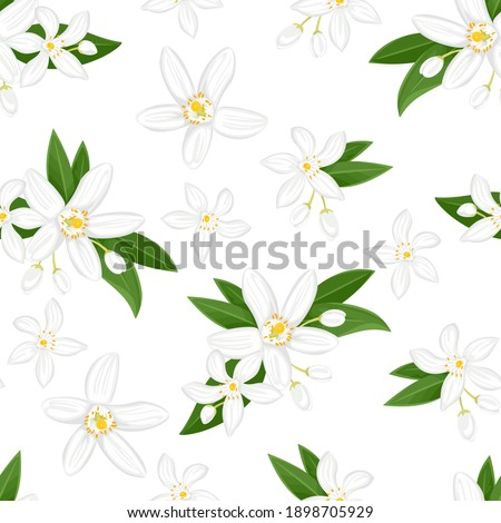 Seamless pattern with orange flowers. Blooming neroli. Floral background. Vector illustration of fragrant plant, green leaves and buds in cartoon flat style. Foto d'archivio ©