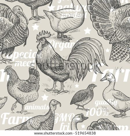 seamless pattern with poultry