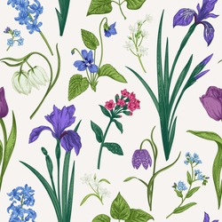 Seamless pattern with spring and summer flowers and herbs. Botanical illustration. Vintage vector backgrod.