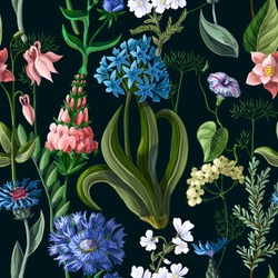 Seamless pattern with wild flowers on a dark background. Vector illustration.