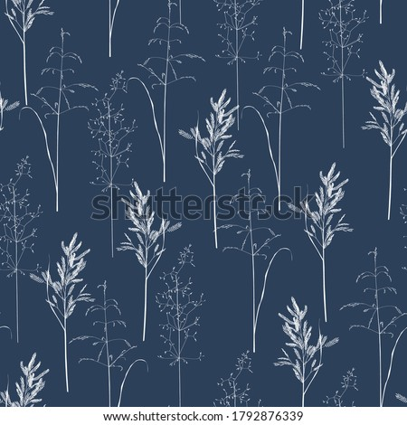 Seamless pattern with wild herbs and grasses.Thin delicate lines silhouettes of different plants. White line on blue background. Foto d'archivio ©