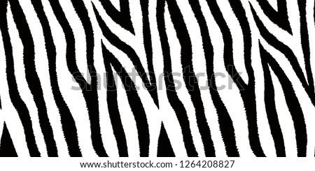 Zebra Print 292 Free Vectors To Download Freevectors