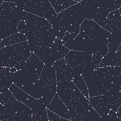 Seamless pattern with zodiac signs. Vector illustration. Starry sky. Zodiac constellations.Horoscope. Polygonal illustration.