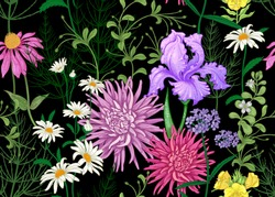 Seamless summer pattern. Wild flowers chamomile, herbs, aster, iris. Floral decoration for printing on wallpaper, paper, textiles, fabrics. Hand drawing sketch. Fashion illustration. Black background.