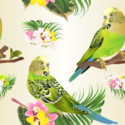Seamless texture green parakeets Budgerigars, home pet , pet parakeet  or budgie or shell parakeet with Orchid cymbidium pink white and yellow  palm ficus watercolor vintage vector illustration