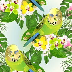Seamless texture parakeets green Budgerigars home pet ,   or budgie or shell parakeet  and Orchids cymbidium with tropical palm and philodendron   watercolor vintage vector illustration editable hand