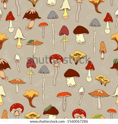 Seamless vector pattern of various edible and inedible mushrooms. Mushroom, chanterelle mushrooms, porcini mushroom, toadstool, fly agaric, leaves. Drawn by hand. Beige background