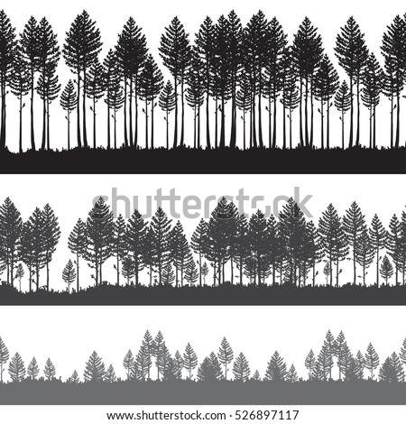 seamless vector pine forest