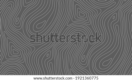 seamless vector topographic map