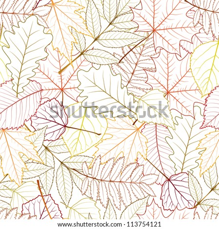 seamless with autumn leaves on white background. vector illustration