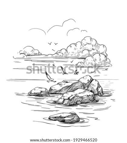 Seascape sketch. Sea, rocks, seagulls, landscape. Hand drawn illustration converted to vector. Black outline on transparent background Photo stock ©