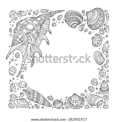 seashell border frame  ocean