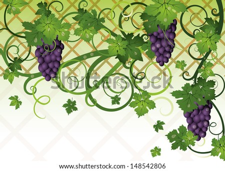Season autumn banner with grapes, vector illustration