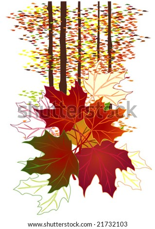 Season series: Autumn landscape with trees and leaves