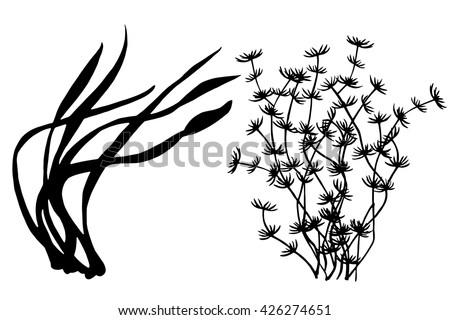 seaweed black silhouettes