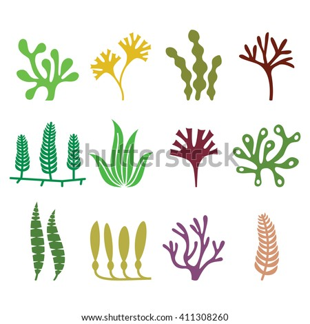 Seaweed icons set - nature, food trends concept