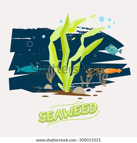 seaweed under water with fish