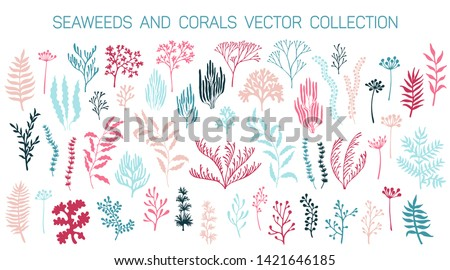 Seaweeds and coral reef underwater plans vector collection. Aquarium, ocean and marine algae water plants, corals isolated on white. Pink blue seaweeds polyps silhouettes set. Laminaria kelp and other