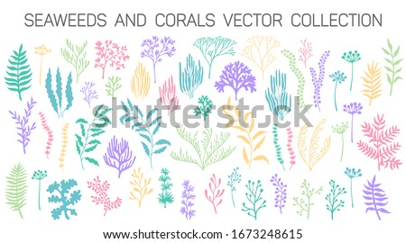 Seaweeds and coral reef underwater plans vector collection. Aquarium, ocean and marine algae water plants, corals isolated on white. Seaweeds polyps silhouettes set. Branches, twigs and flowers.