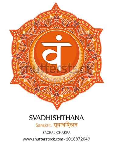 Second chakra illustration vector of Svadhishthana